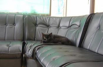 c-sofa2