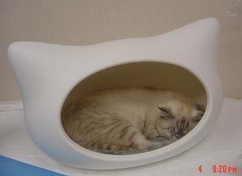 kitty-h-vitton1.JPG