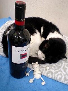 ワインとマグネットねこ