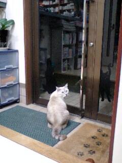 ドア ボーイ☆