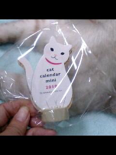 カレンダーにゃ