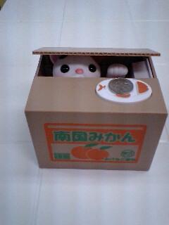 みかん箱猫