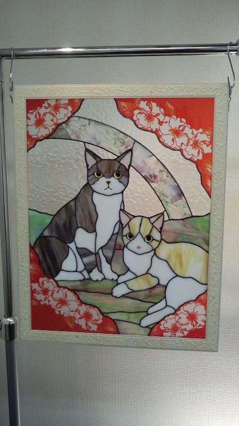 toto猫展 ひかり猫